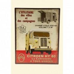 Plaque tôle camionette HY 80